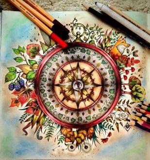Mein Zauberwald - Malbuch für Erwachsene - Kompass fertig ausgemalt von Nicole
