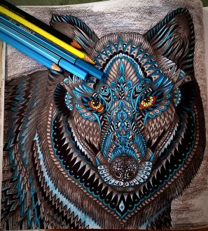 Tierzauber - Ausmalmotive für mehr Gelassenheit - Malbuch für Erwachsene -Wolf fertig ausgemalt von Nicole