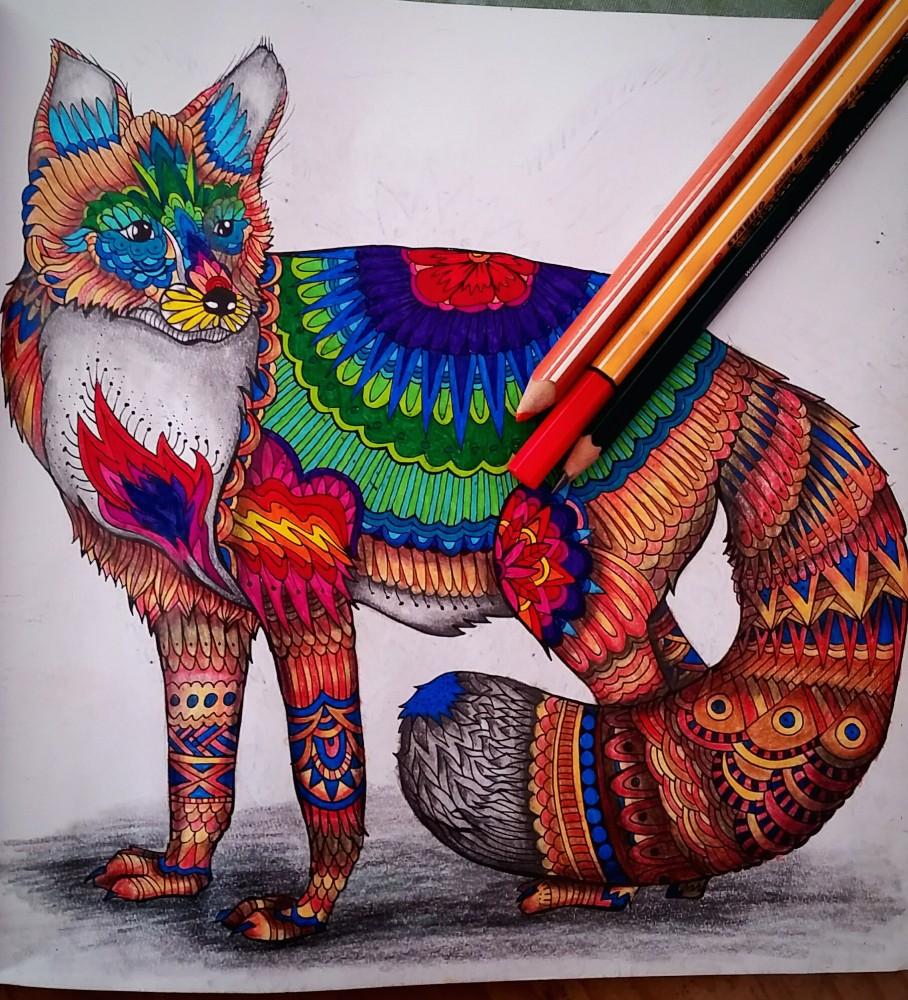 Tierzauber - Ausmalmotive für mehr Gelassenheit - Malbuch für Erwachsene - Fuchs ausgemalt von Nicole
