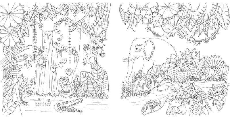 Magical Jungle Von Johanna Basford