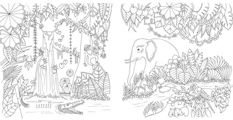 Magical Jungle von Johanna Basford | Malbuch-fuer-Erwachsene.org